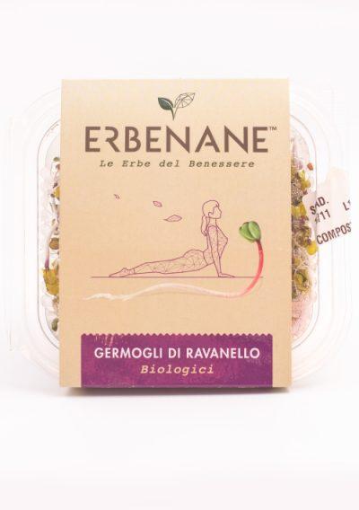 confezione-erbenane-ravanello-2